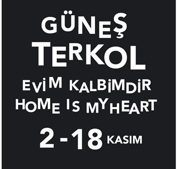 Cam_Gunes_EVim_ - Kopya - Kopya